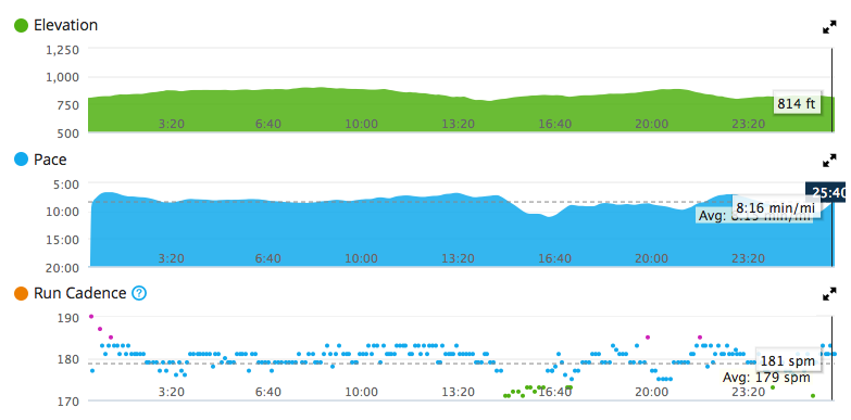 Elevation and pace. At least my cadence was high.