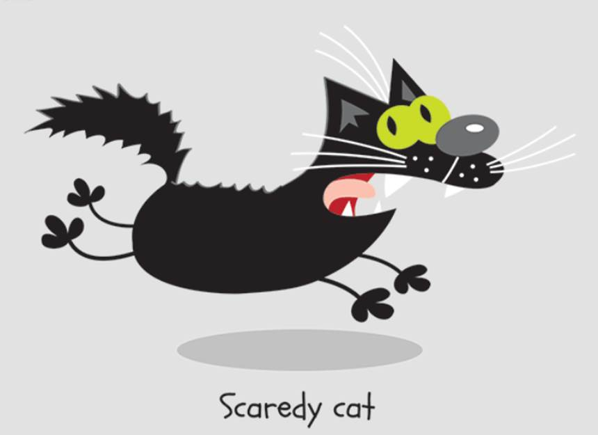 photo from http://alanrowe.com/blog/wp-content/uploads/2014/12/scaredy-cat.png